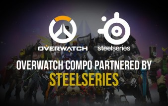 Steelseries Overwatch compo